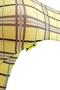 yellowbody_detail